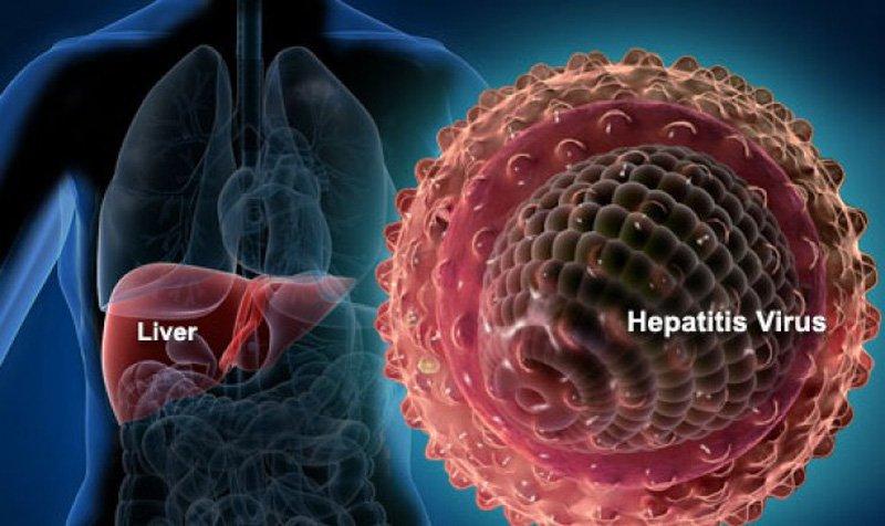 Xét nghiệm NAT phát hiện sớm Viêm gan B và C  - ảnh 2